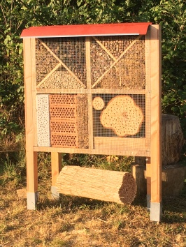 Wildbienenprojekt im Kindergarten